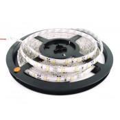 LED STRIPS (25)